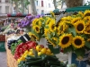 Aix en Provence daily market